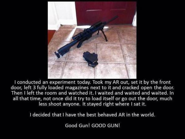 gunarbehaved