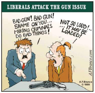 guncontrolforlibs