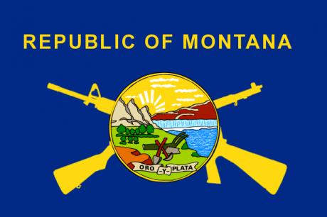 MontanaFlagGuns