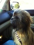 The Name's CHEWY. Get it straight, son.