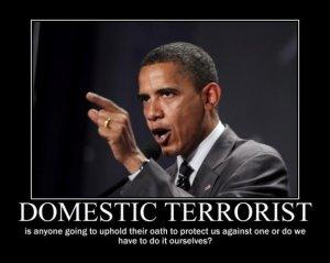 obamadomesticterrorist2